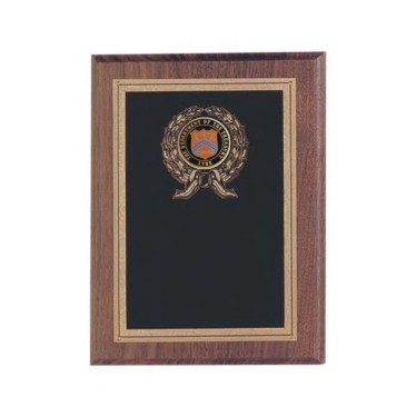 Custom Engraved Department of the Treasury Plaques