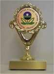 Custom Engraved US Environmental Protection Agency EPA   Trophies