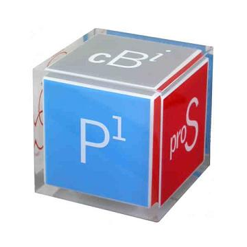 Custom Printed Cube Shaped Acrylic Embedments