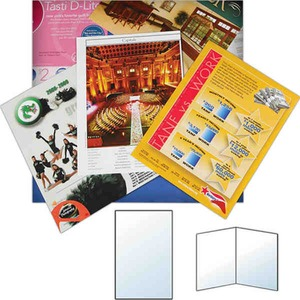 Custom Printed Flyers and Sell Sheets