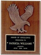 Custom Engraved Airflyte Honor Award Plaques