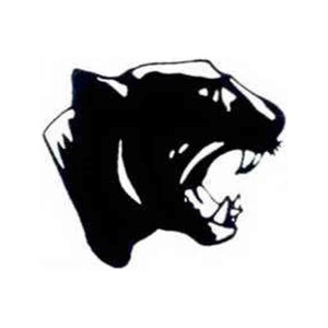 Custom Printed Panther Mascot Tattoos