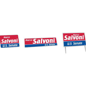 Custom Printed Political Campaign Political Election Campaign Kits